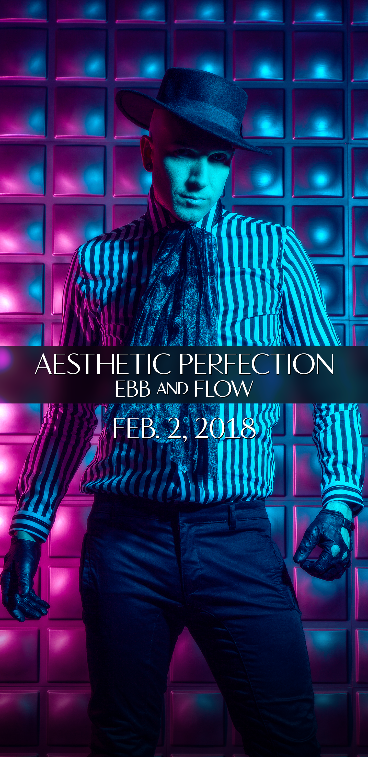 Aesthetic Perfection Downloads